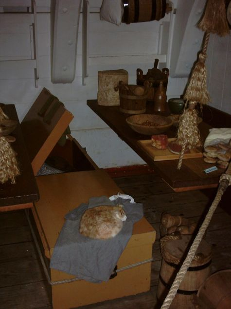 768px-HM_Bark_Endeavour_replica_(Ship's_Cat_and_Mess_Area)