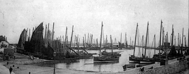 Old Photograph Herring Fishing Fleet Anstruther East Neuk Of Fife Scotland